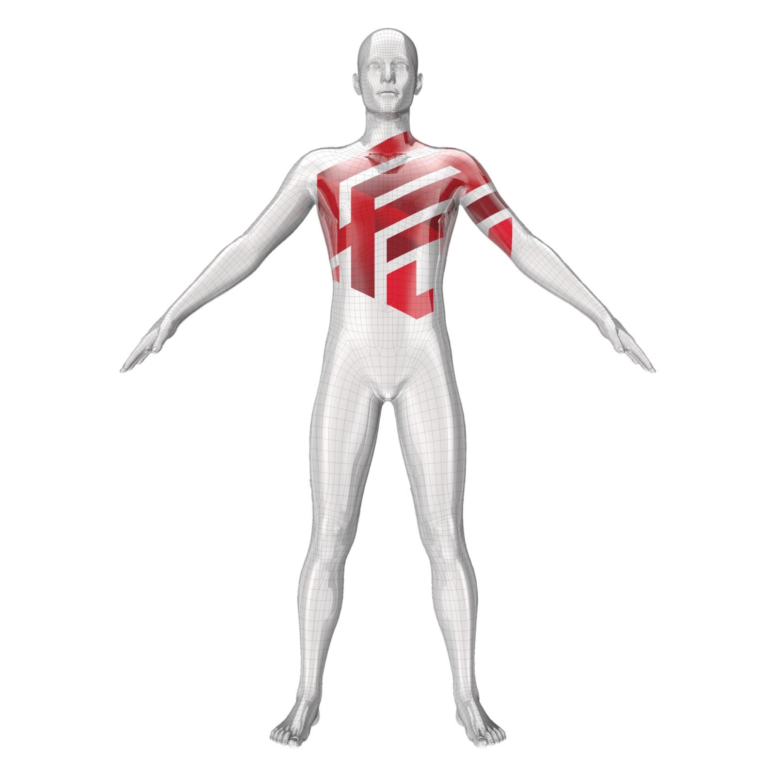 Human body model with Global Regenerative Trade Logo